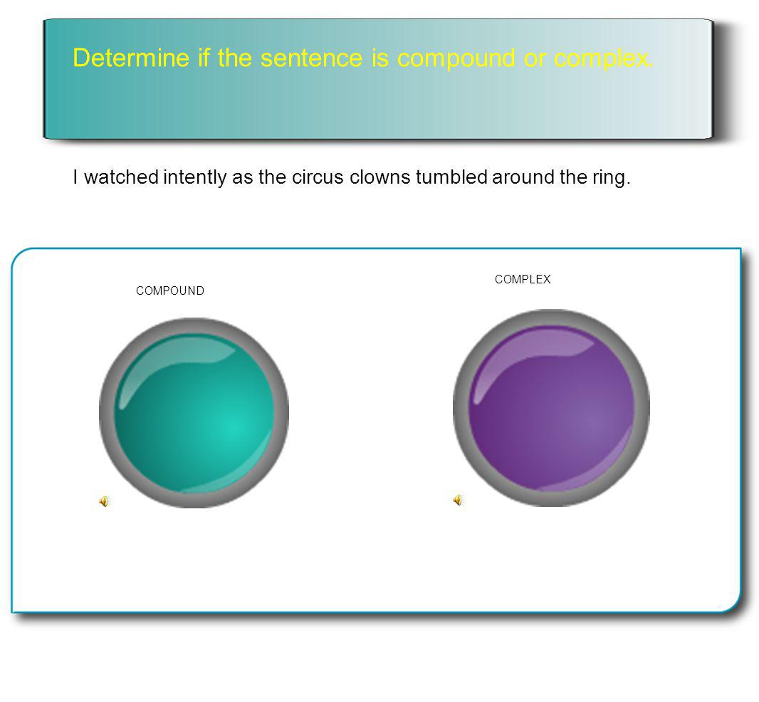 Determine if the sentence is compound or complex.