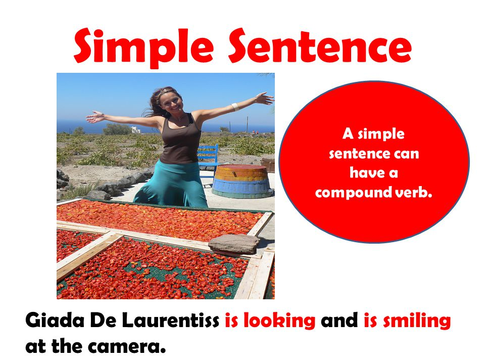 A simple sentence can have a compound verb.
