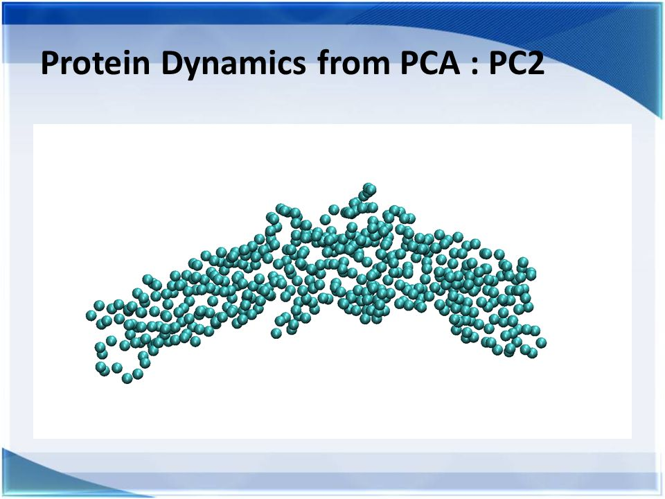Protein Dynamics from PCA : PC2