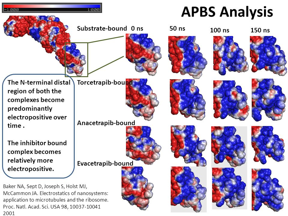 APBS Analysis Substrate-bound 0 ns 50 ns 100 ns 150 ns