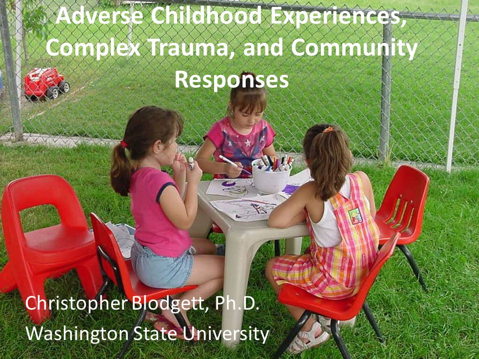 Adverse Childhood Experiences, Complex Trauma, and Community Responses