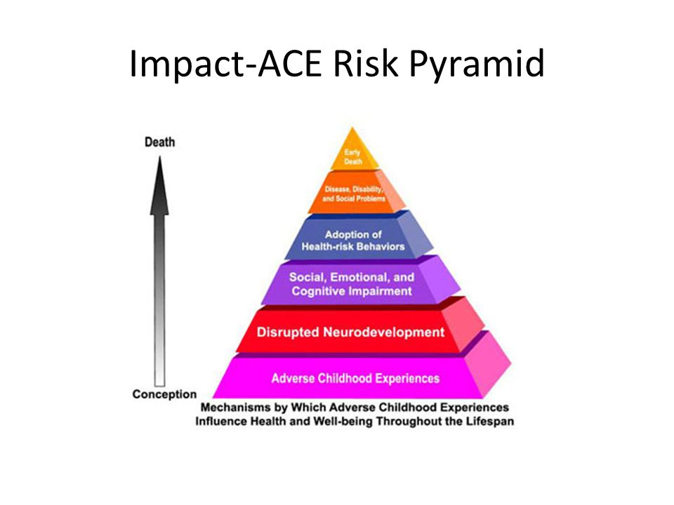 Impact-ACE Risk Pyramid