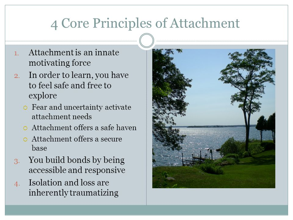 4 Core Principles of Attachment