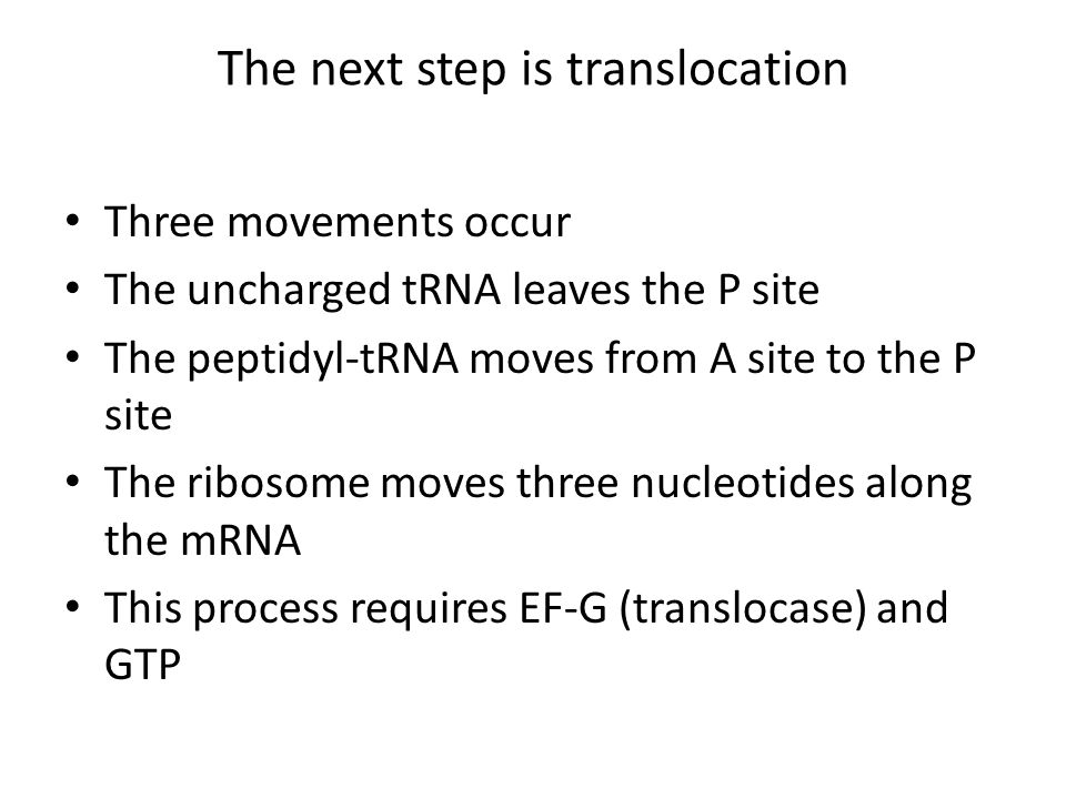 The next step is translocation