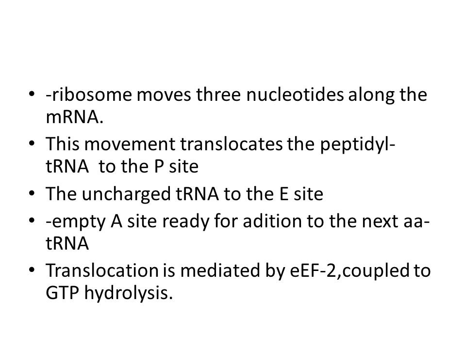 -ribosome moves three nucleotides along the mRNA.