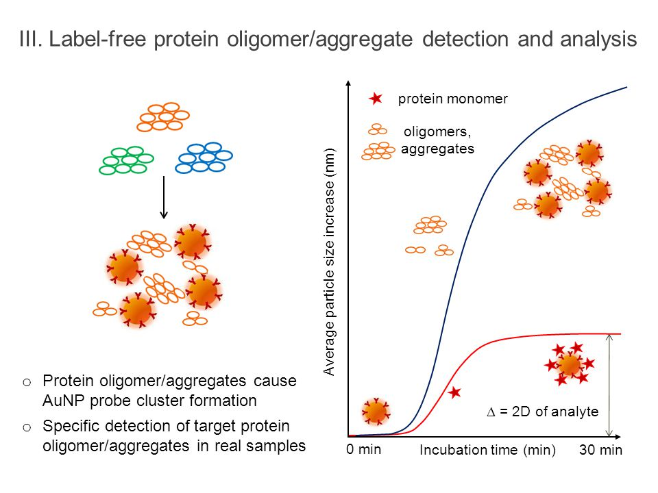 III. Label-free protein oligomer/aggregate detection and analysis