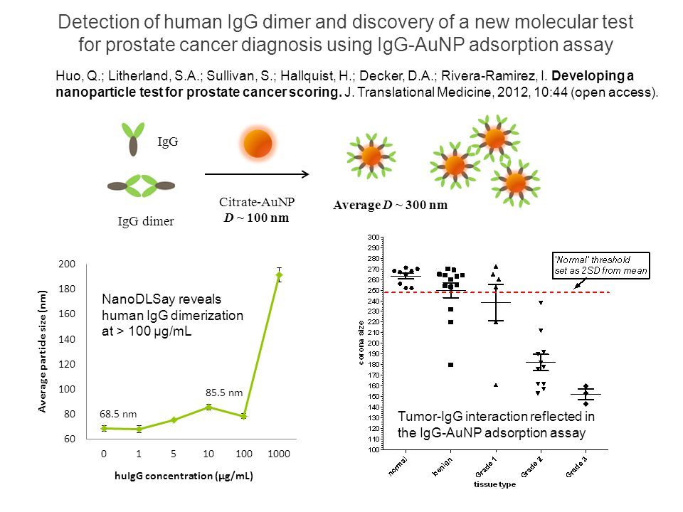 Detection of human IgG dimer and discovery of a new molecular test for prostate cancer diagnosis using IgG-AuNP adsorption assay