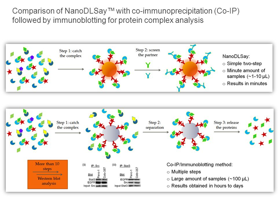 Comparison of NanoDLSay™ with co-immunoprecipitation (Co-IP) followed by immunoblotting for protein complex analysis