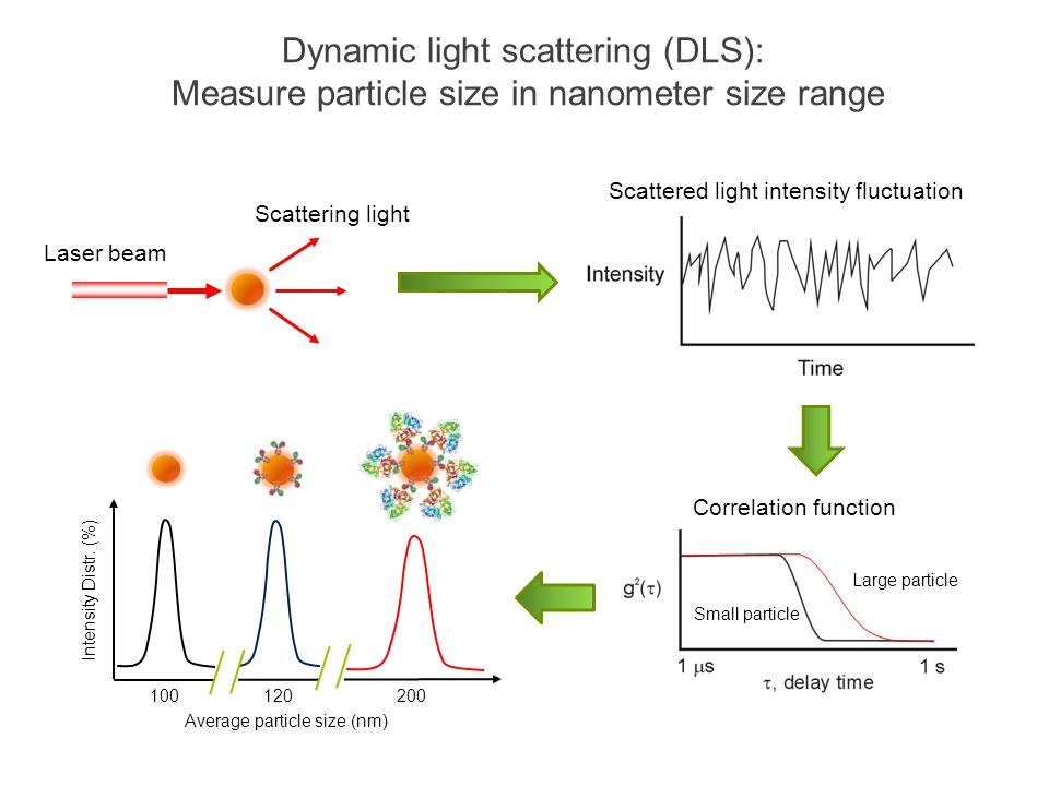 Dynamic light scattering (DLS): Measure particle size in nanometer size range