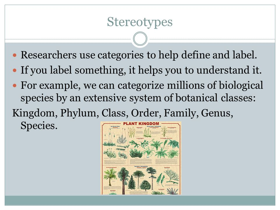 Stereotypes Researchers use categories to help define and label.