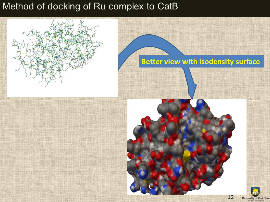 Method of docking of Ru complex to CatB