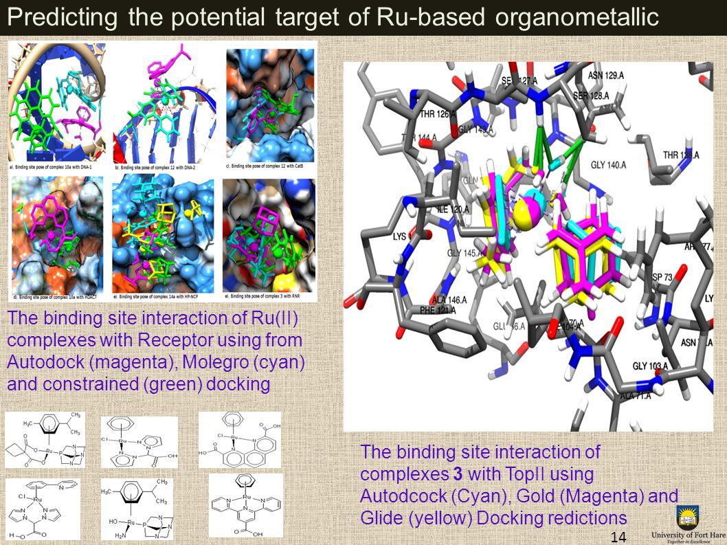 Predicting the potential target of Ru-based organometallic