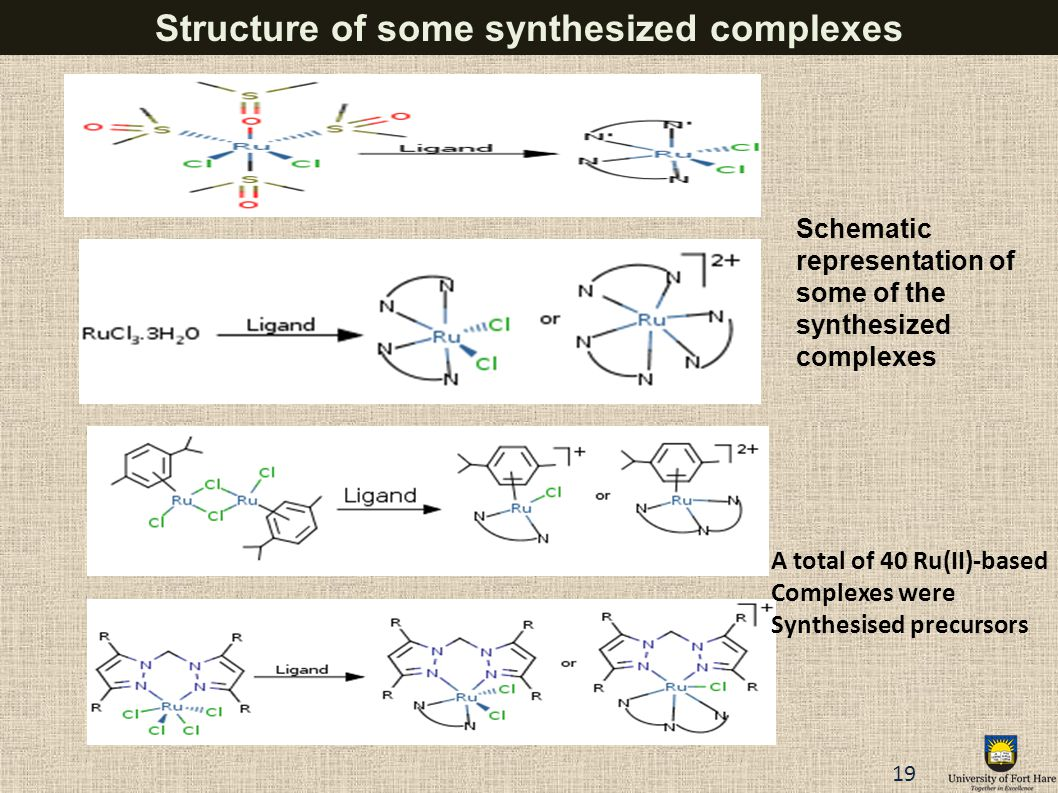 Structure of some synthesized complexes