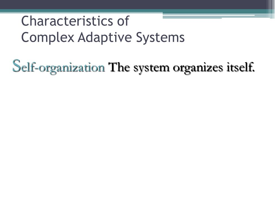 Characteristics of Complex Adaptive Systems