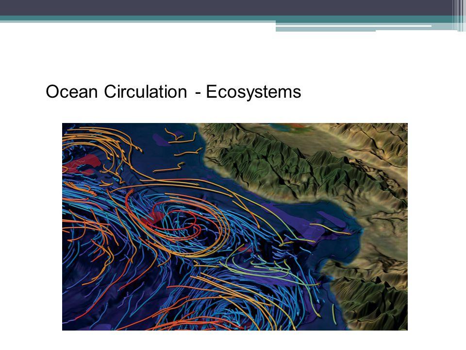 Ocean Circulation - Ecosystems
