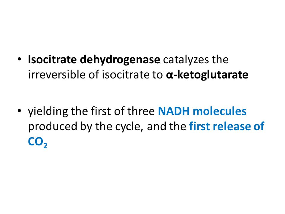 Isocitrate dehydrogenase catalyzes the irreversible of isocitrate to α-ketoglutarate