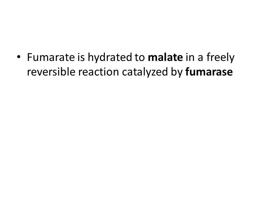 Fumarate is hydrated to malate in a freely reversible reaction catalyzed by fumarase