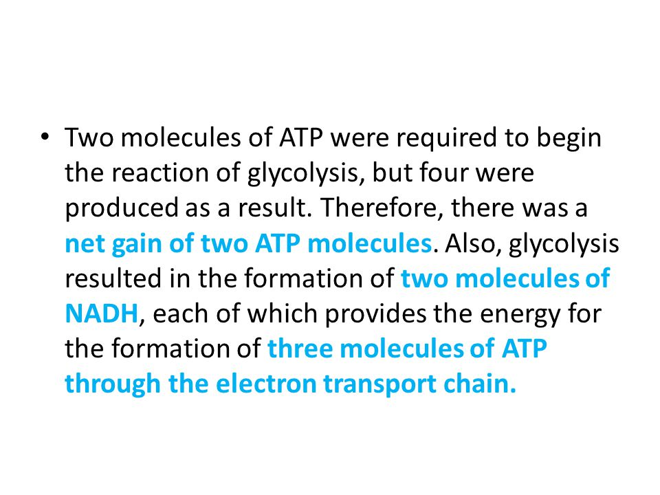 Two molecules of ATP were required to begin the reaction of glycolysis, but four were produced as a result.