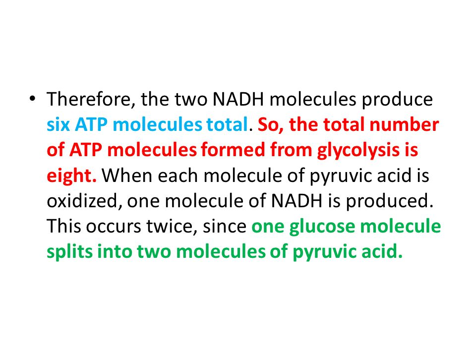Therefore, the two NADH molecules produce six ATP molecules total