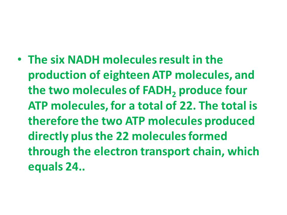 The six NADH molecules result in the production of eighteen ATP molecules, and the two molecules of FADH2 produce four ATP molecules, for a total of 22.