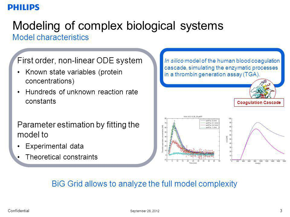 Modeling of complex biological systems Model characteristics