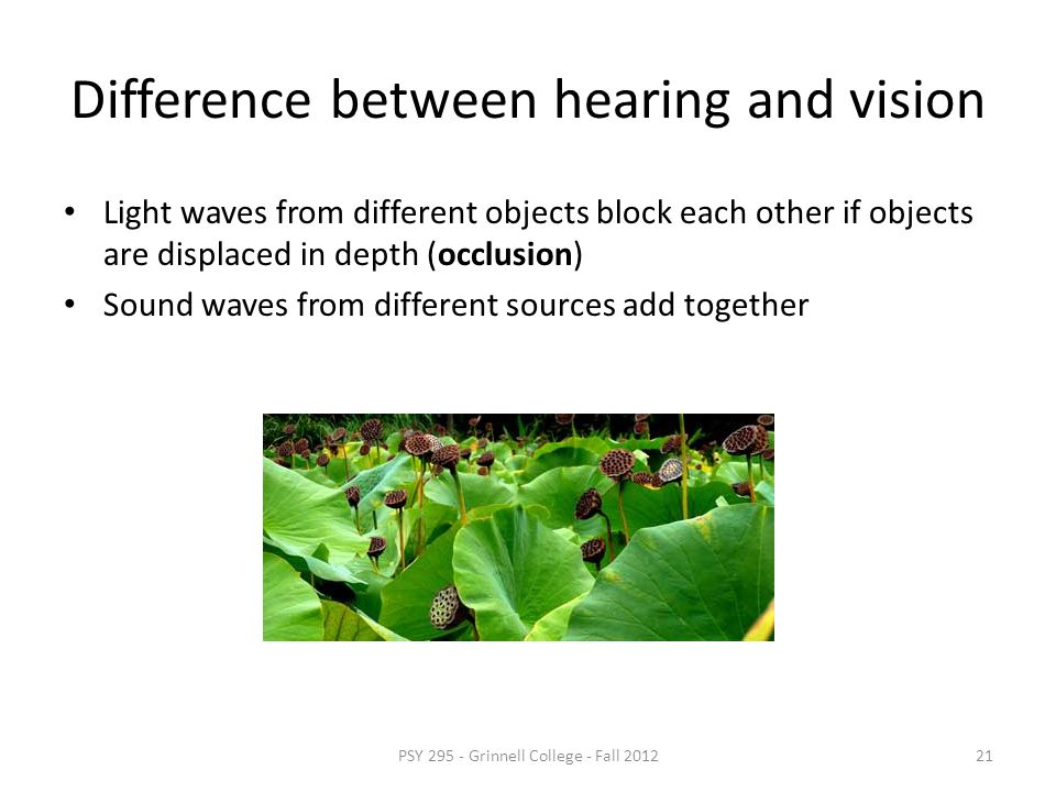 Difference between hearing and vision