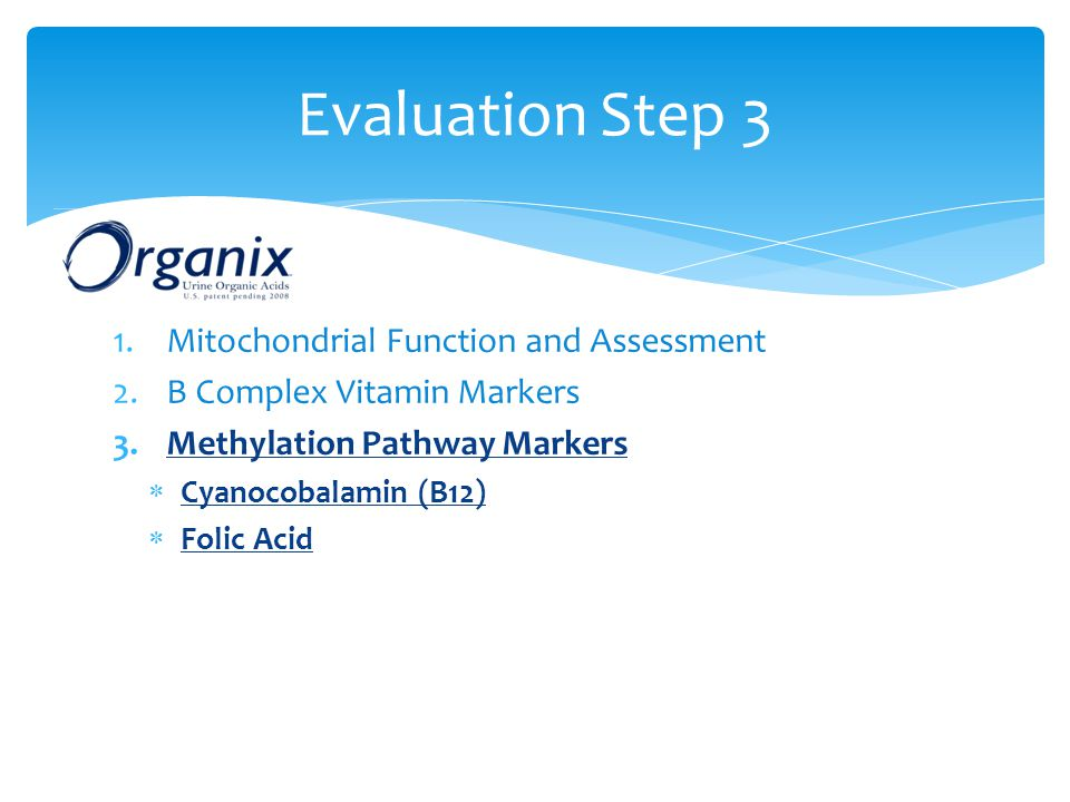 Evaluation Step 3 Mitochondrial Function and Assessment