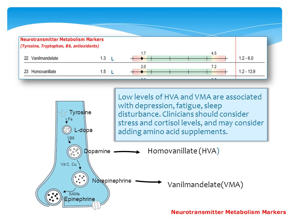 Low levels of HVA and VMA are associated with depression, fatigue, sleep disturbance. Clinicians should consider stress and cortisol levels, and may consider adding amino acid supplements.