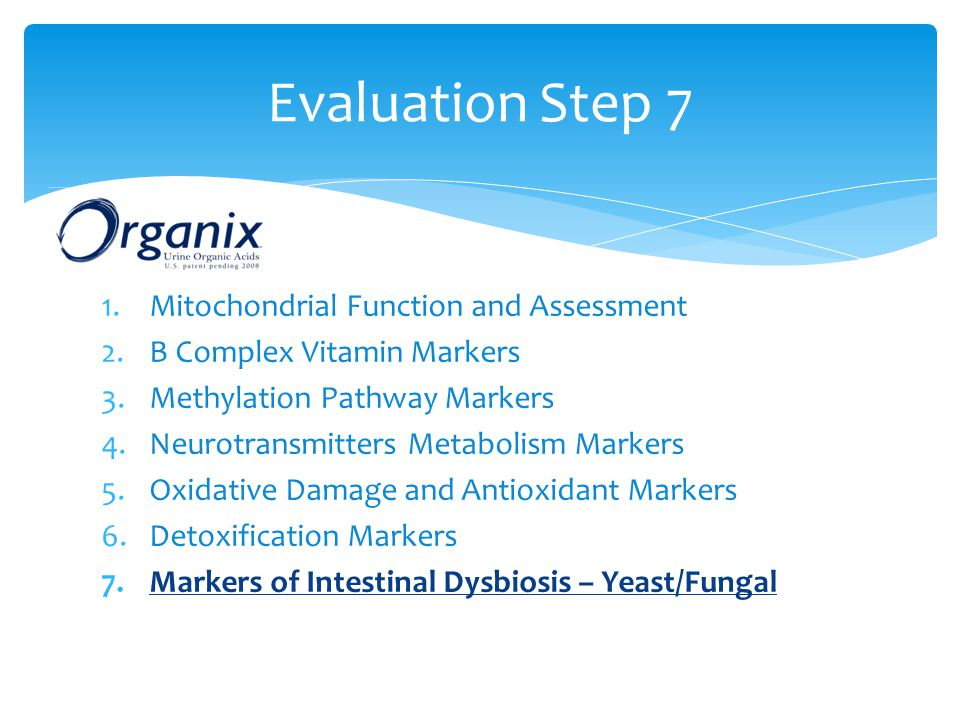 Evaluation Step 7 Mitochondrial Function and Assessment