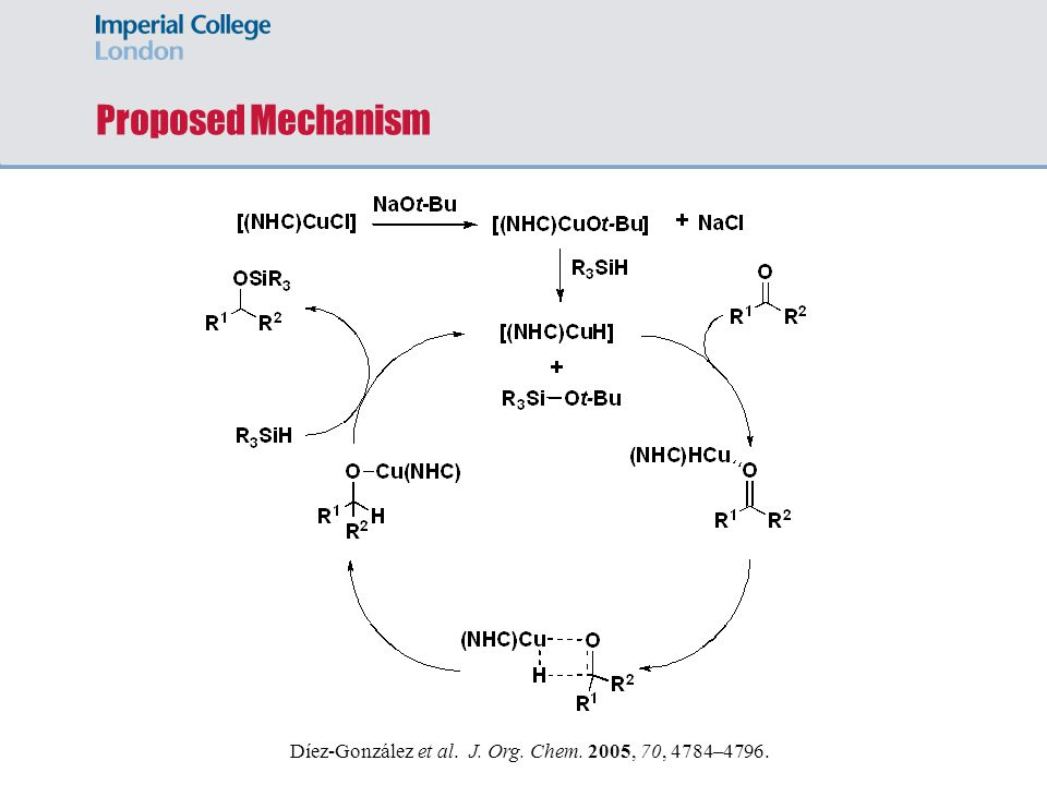 Proposed Mechanism Díez-González et al. J. Org. Chem. 2005, 70, 4784–4796. 20