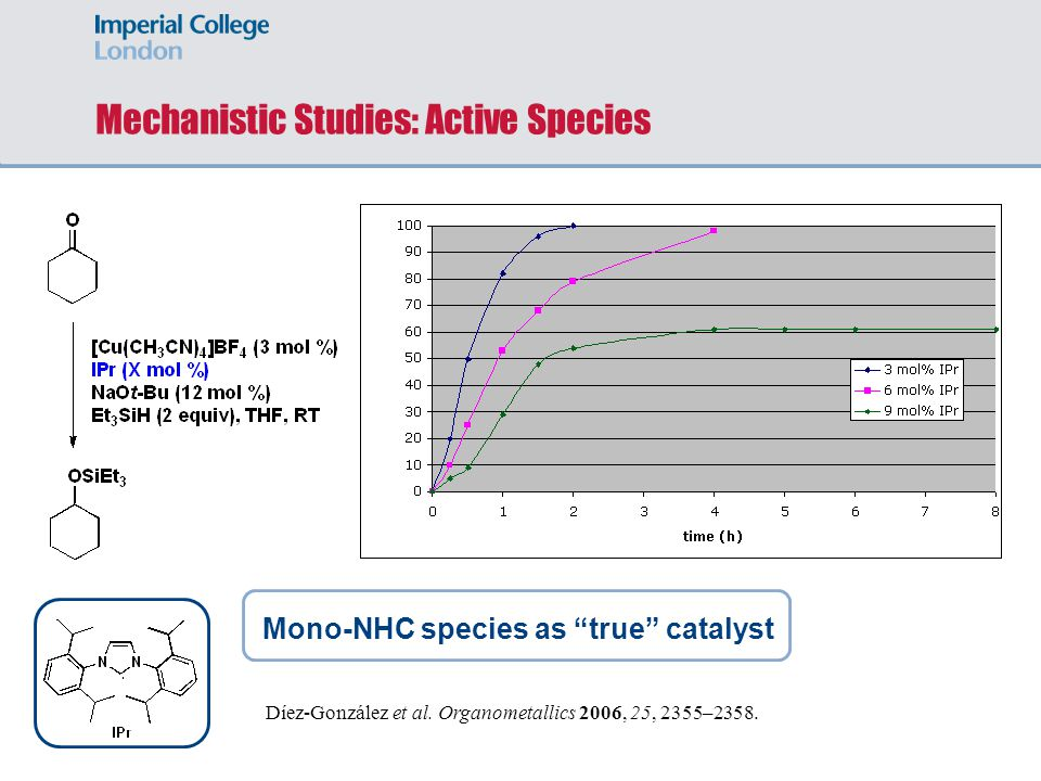 Mechanistic Studies: Active Species