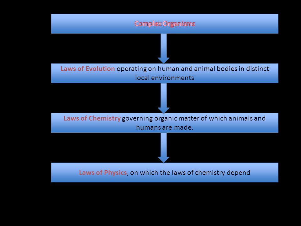 Laws of Physics, on which the laws of chemistry depend