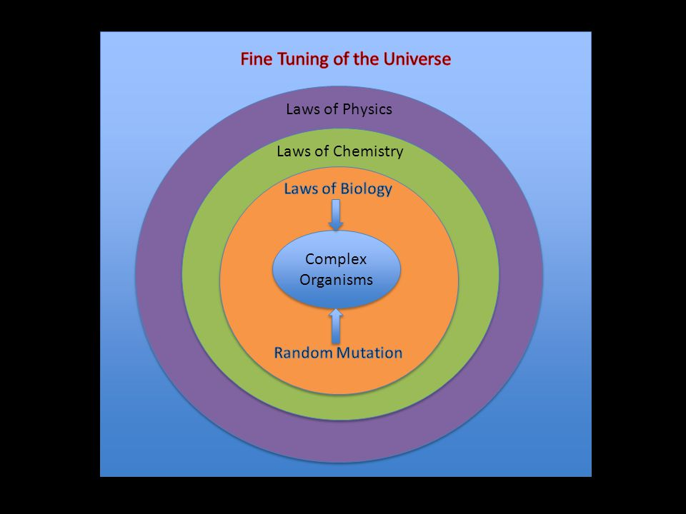Fine Tuning of the Universe