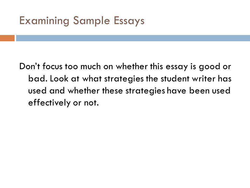 Best Essay Sample