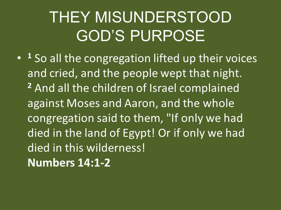 THEY MISUNDERSTOOD GOD'S PURPOSE
