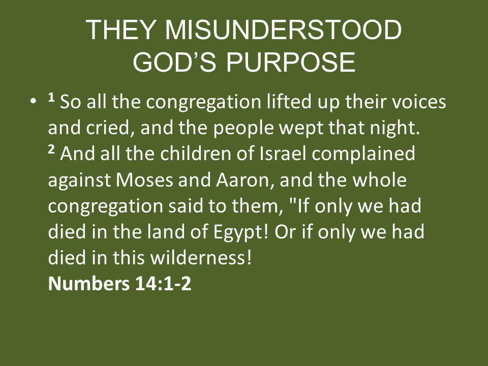 THEY MISUNDERSTOOD GOD'S PURPOSE