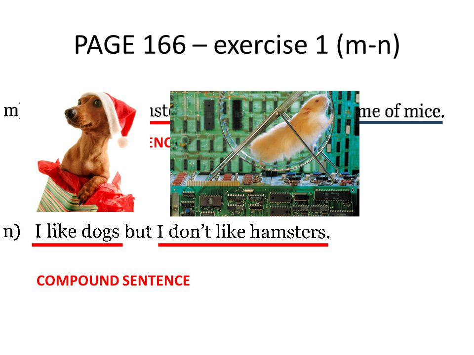 PAGE 166 – exercise 1 (m-n) COMPLEX SENTENCE COMPOUND SENTENCE