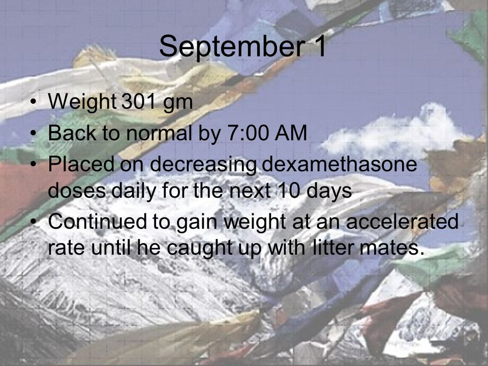 September 1 Weight 301 gm Back to normal by 7:00 AM