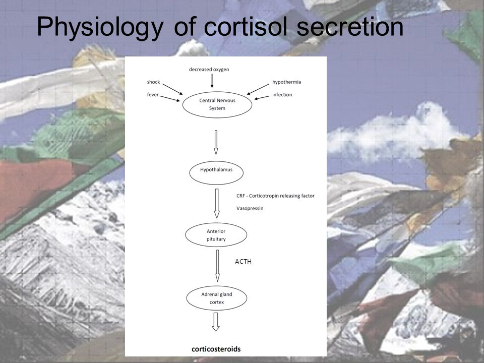 Physiology of cortisol secretion