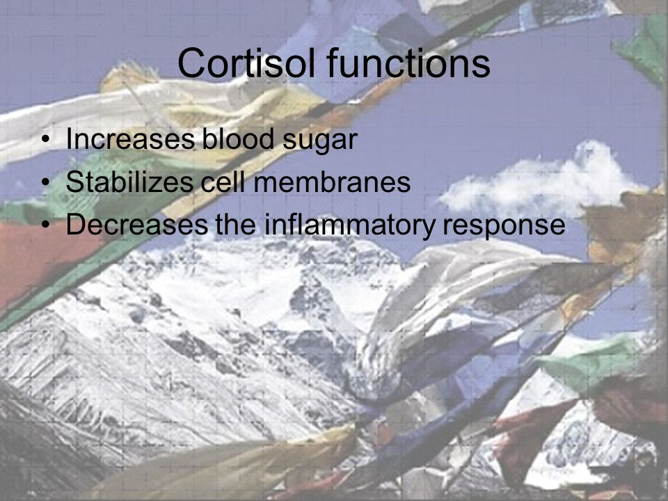 Cortisol functions Increases blood sugar Stabilizes cell membranes