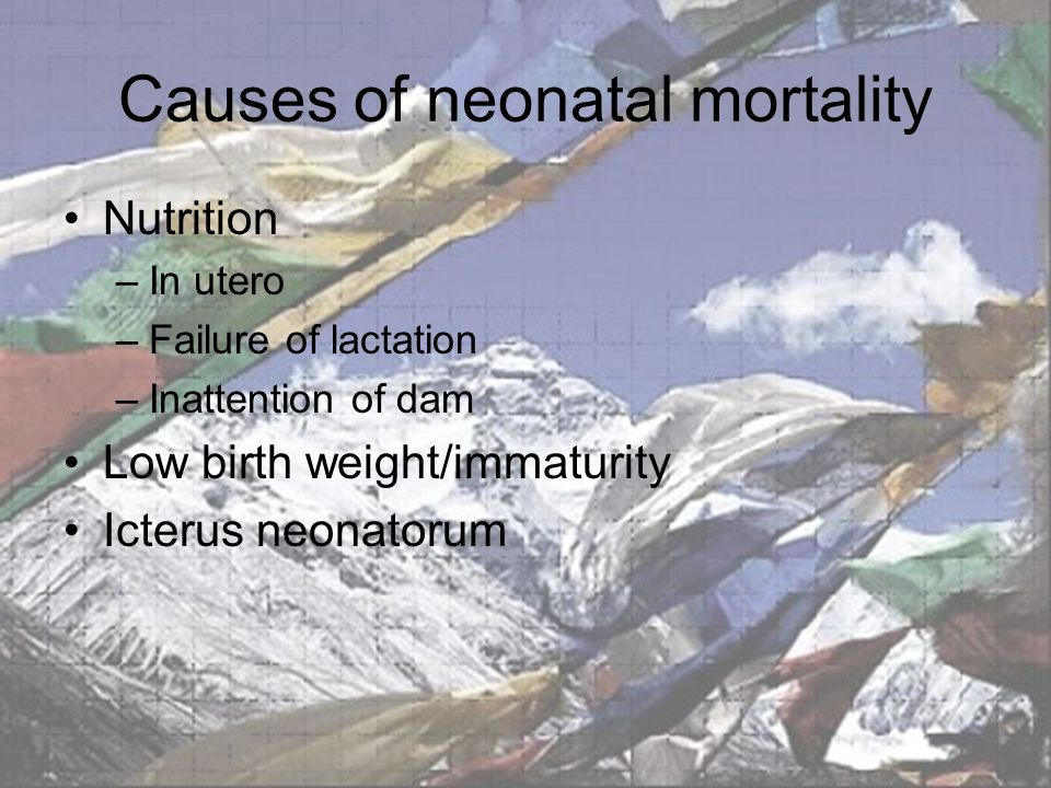Causes of neonatal mortality