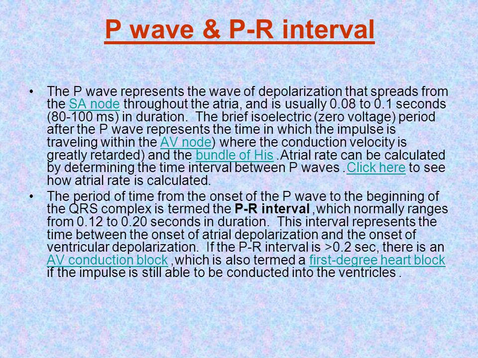 P wave & P-R interval