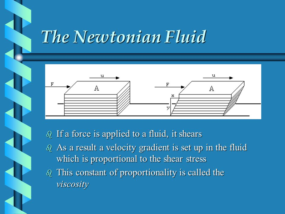 The Newtonian Fluid If a force is applied to a fluid, it shears