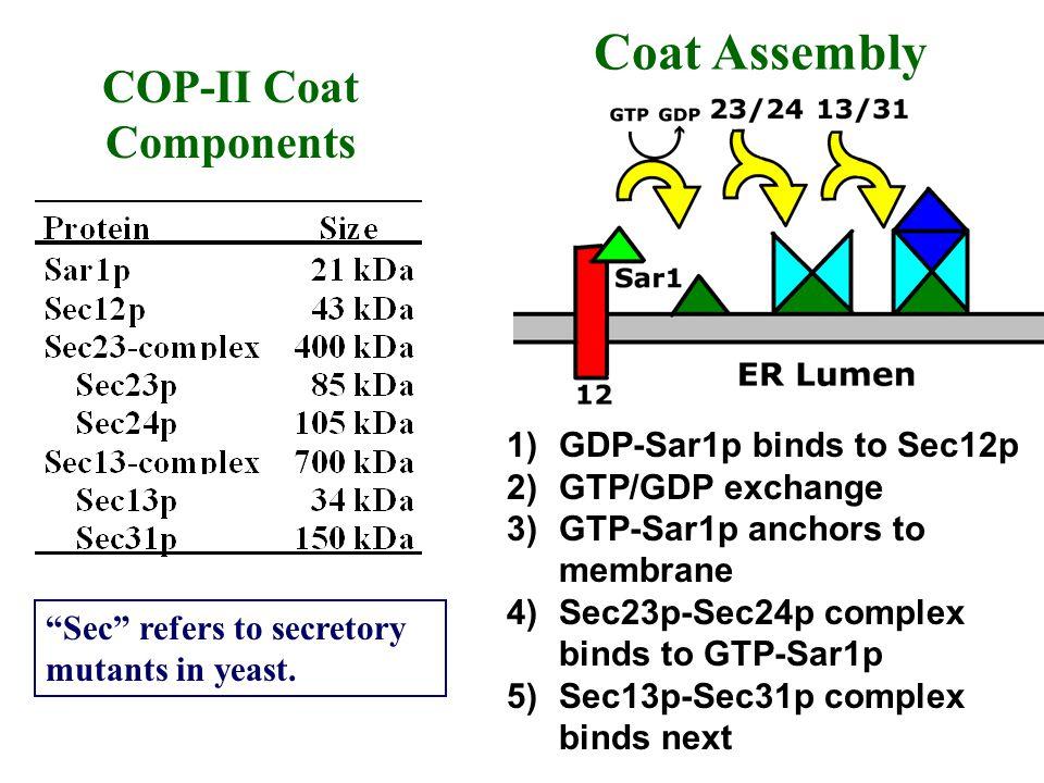 COP-II Coat Components