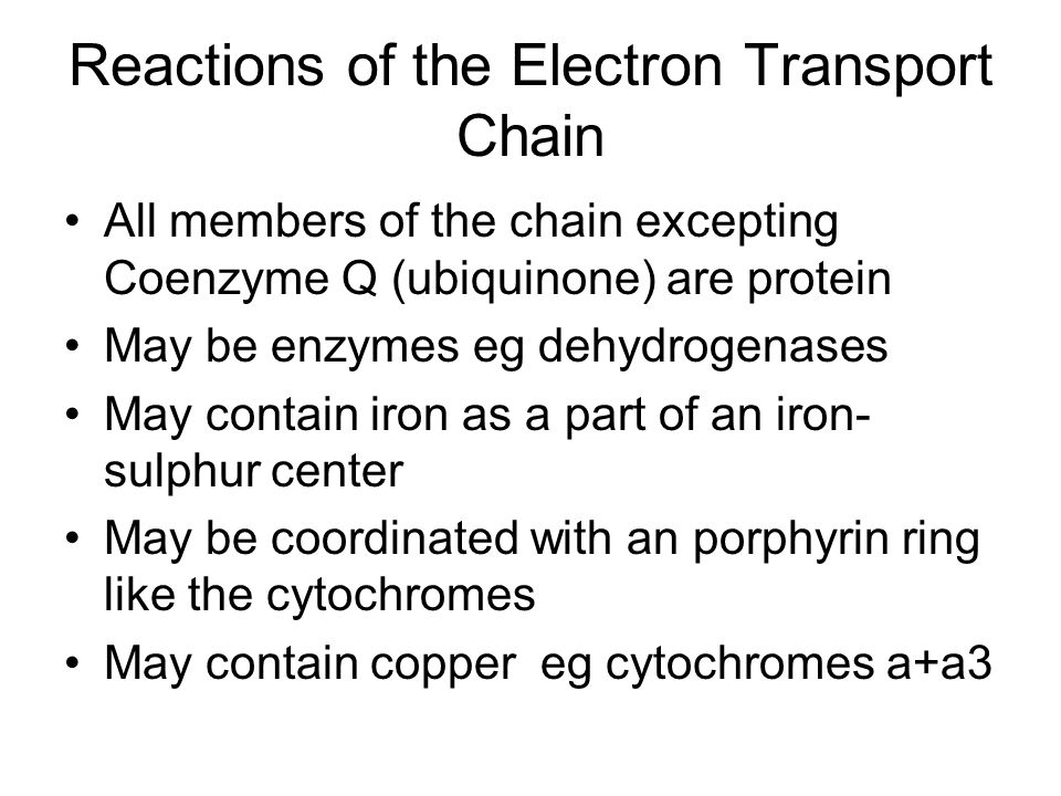 Reactions of the Electron Transport Chain