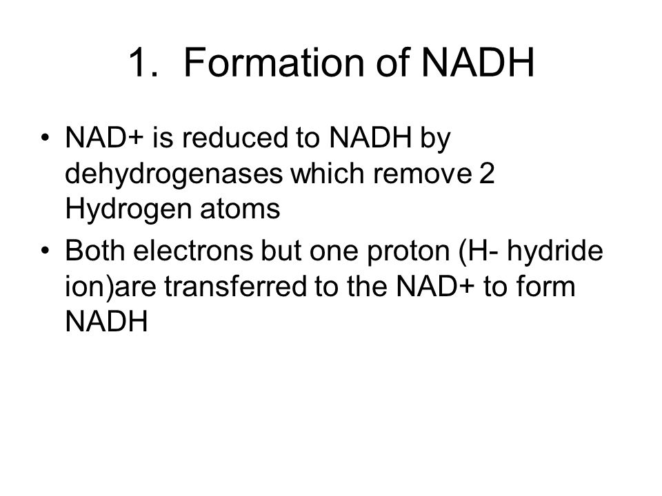 1. Formation of NADH NAD+ is reduced to NADH by dehydrogenases which remove 2 Hydrogen atoms.