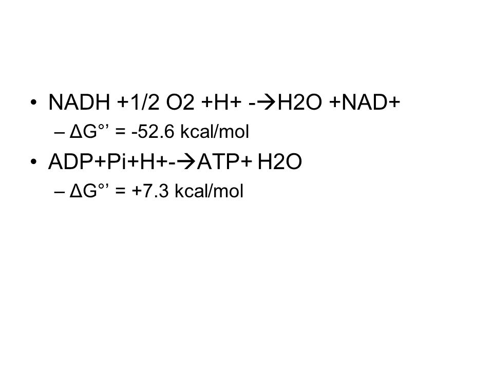 NADH +1/2 O2 +H+ -H2O +NAD+ ADP+Pi+H+-ATP+ H2O ΔG°' = -52.6 kcal/mol