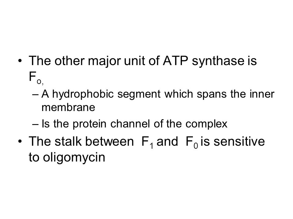 The other major unit of ATP synthase is Fo,
