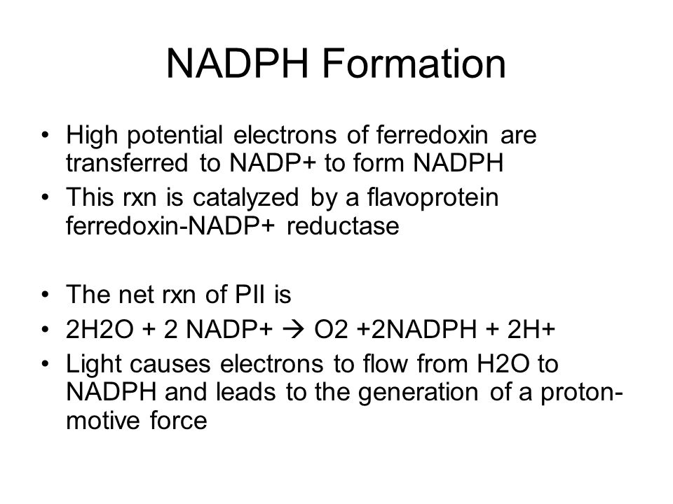 NADPH Formation High potential electrons of ferredoxin are transferred to NADP+ to form NADPH.