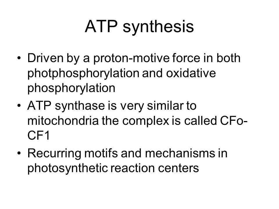 ATP synthesis Driven by a proton-motive force in both photphosphorylation and oxidative phosphorylation.